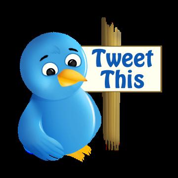 twitter wins lawsuit