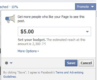 promote posts for pages on facebook