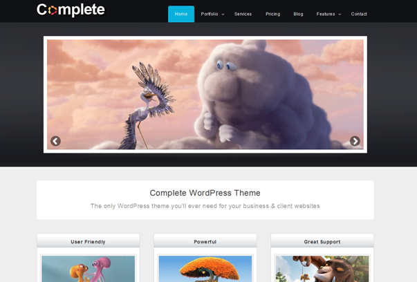 Complete Business and Portfolio WordPress Theme